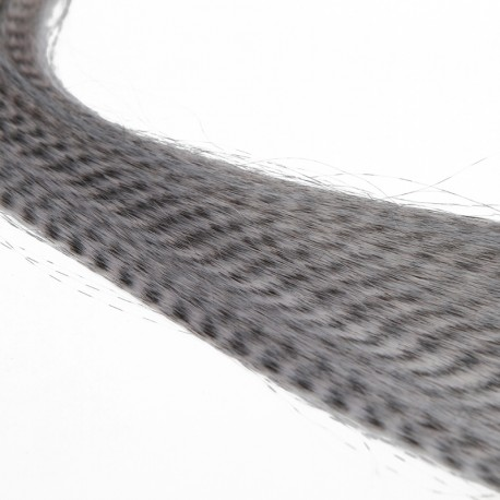 Extensiones de cebra sistema micro-loop